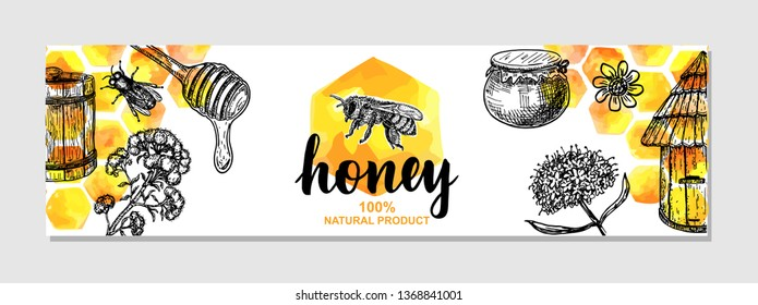 Vector hand drawn honey banner. Detailed engraved illustrations. Watercolor honeycomb, bee, pod, flowers. Great banner, poster, flyer for business promote.