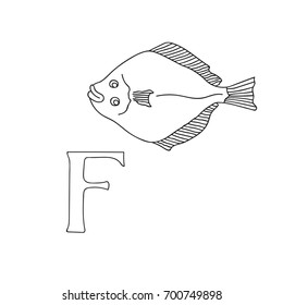 Vector hand drawn illustration capital letter F on alphabet card. Black and white realistic flatfish isolated. Kids ABC, school education. Coloring page for children.