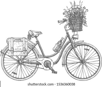 Vector hand drawn illustration of city bicycle in ink hand drawn style. Bike with step-through frame, pannier rack, wine holder, purse flowers and front wicker basket.