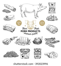 Vector hand drawn Illustration with meat products. Pork meat. Sketch. Vintage style. Retro background.