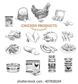 Vector hand drawn Illustration with meat products. Chicken. Sketch. Vintage style. Retro background.
