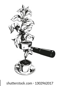 Vector hand drawn illustration with Porta filter, coffe branch and cup. Fresh coffee making concept. Coffee equipment engraved style. Perfect for menu, invitations, greeting cards, posters.