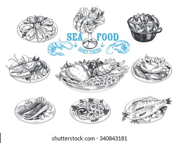 Vector hand drawn illustration with seafood. Sketch. Mediterranean cuisine. Lobster, oysters, shrimp, fish, mussels, crab, cancer, squid rings.