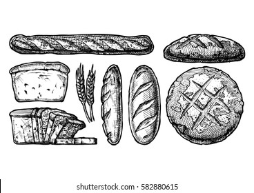 Vector hand drawn illustration set of different breads: wheat germ, long loaf, pan loaf (sliced), baguette and boule. Black and white, isolated on white.