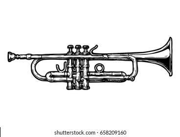 Vector hand drawn illustration of trumpet. Black and white, isolated on white.