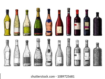 Vector hand drawn illustration of Wine Bottles in vintage engraved style. Color and black-and-white versions.