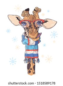 Vector hand drawn illustrations. Portrait of cute giraffe in Christmas accessories. Each object can be changed and moved for your design.