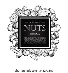 Vector hand drawn nuts illustration. Engraved. Great for your business promote