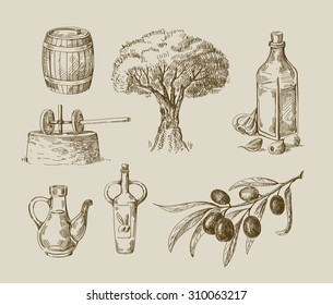 vector hand drawn olive oil sketch and nature