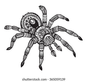 Vector hand drawn ornate spider in zentangle style. Doodle sketch for tattoo, print or t-shirt