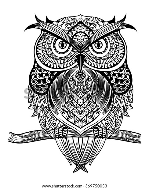 Vector Hand Drawn Owl Sitting On Stock Vector Royalty Free 369750053