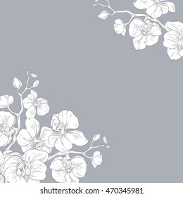 Vector hand drawn pattern with stylized orchid branch for your design on the light gray background, pattern can be used for wallpaper. Vintage illustration with space for text