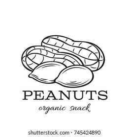 Vector hand drawn peanuts for template label, packing and emblem farmer market design. Retro sketch style.