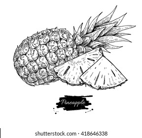 Vector hand drawn pineapple and sliced pieces. Tropical summer fruit engraved style illustration. Detailed food drawing. Great for label, poster, print