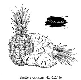 Pineapple Slice Drawing Images Stock Photos Vectors