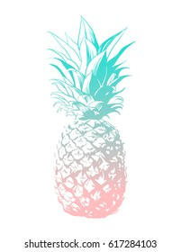 Vector hand drawn pineapple. Tropical summer fruit engraved style illustration. Perfect for invitations, greeting cards, posters.