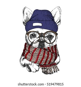 Vector hand drawn portrait of cozy winter dog. French bulldog wearing knitted scarf, beanie and hipster glasses. Winter sketched poster. for flyer, poster, clothing prints. Xmas, Christmas, New Year.