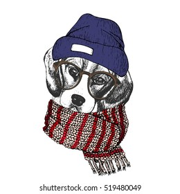 Vector hand drawn portrait of cozy winter dog. Beagle wearing knitted scarf, beanie and hipster glasses. Winter sketched poster. Use for flyer, poster, clothing prints. Xmas, Christmas, New Year.