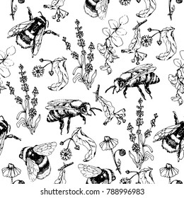 Vector hand drawn seamless pattern with bees and honey flowers, can be used for textiles,covers and packaging design