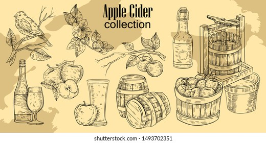 Vector hand drawn set in engraving style of apple branches, flowers, press, cask, apples, bottle with glass and bird. Vintage design for apple cider and juice