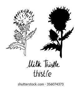 Vector hand drawn set with thistle. Vector illustration
