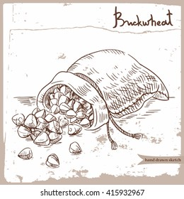 Vector hand drawn sketch of the buckwheat groats in the sack on the textured paper background. Hand drawn linear illustration of the buckwheat groats. Image for farm, shop, tag, agriculture industry.