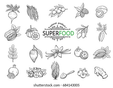 Vector hand drawn sketch superfood icons set. Healthy detox natural product of camu camu, garcinia cambogia and maca. Carob, ginger, moringa, lucuma, coji berries, mangosteen, acai, guarana and noni.