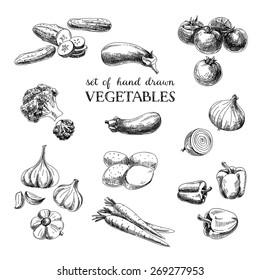 Vector hand drawn sketch vegetable set. Eco foods.Vector illustration.