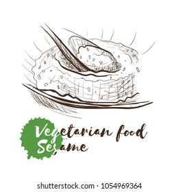 Vector hand drawn sketch of vegetarian food with food name. Eco food. Monochrome Sesame isolated on white sketch.