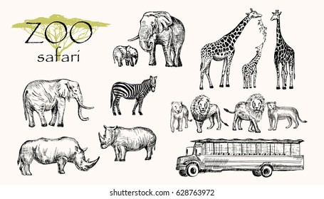 Vector hand drawn sketched animal set. Zoo safari: elephant, zebra, lion, rhino, giraffe and safari bus.