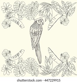Vector hand drawn Tropical parrot and flowers, leaves and space for text. Coloring book for adult, Coloring page. Design element for card, print, template, wallpaper, texture.