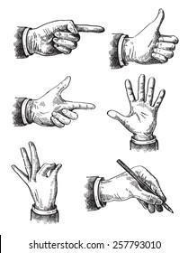 Vector hand frawn Illustration of hand on white