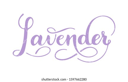 Vector hand written lavender text isolated on white background. Kitchen healthy herbs and spices for cooking. Script brushpen lettering with flourishes. Handwriting for banner, poster, product label