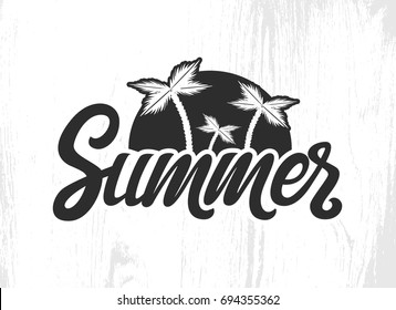 Vector hand written lettering Summer. Lettering vector  EPS 10 calligraphy phrase isolated on the background. Summer fun brush ink typography for photo overlays, t-shirt print, flyer, poster design