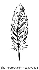 Vector hand-drawn feather