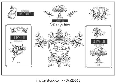 Vector hand-drawn olive and olive oil sketch emblems set. Illustration and icons. Vintage design