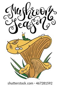 "Vector handlettering ""Mushroom season"" with hand drawn illustration of chanterelle mushroom in color. Doodle style, can be used for menu, sign, banner or poster."