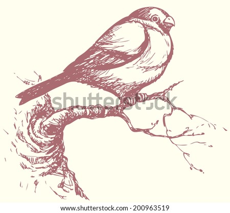 Vector Handmade Drawing Series Monochrome Sketches Stock Royalty Free 200963519