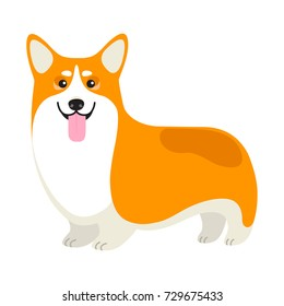 Vector Happy Corgi Dog illustration The Symbol of 2018 Chinese New Year on White Background for Use in Design and Logo.