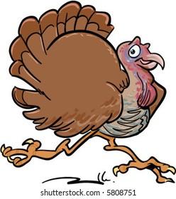 vector happy turkey running illustration