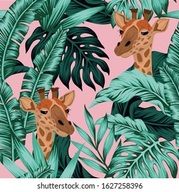 Vector head giraffe with tropical green leaves. Cartoon exotic seamless illustration repeating pattern on pink background. Floral wallpaper