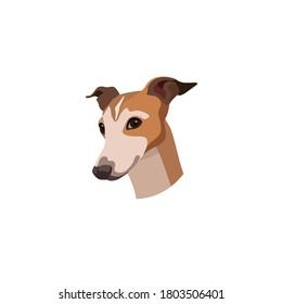 Vector head of a Greyhound dog breed