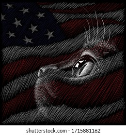The Vector head of kitten on the flag  USA for cats tattoo or T-shirt design or outwear. Until Independence Day!