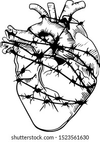 Vector heart in barbed wire. drawing for tattoo. logo, emblem