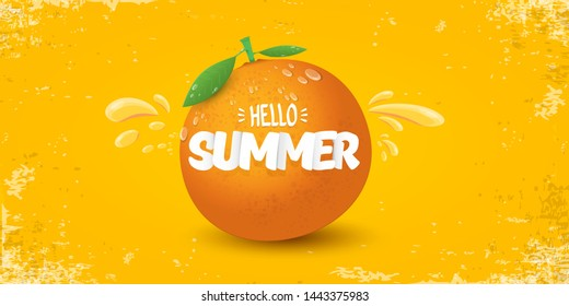 Vector Hello Summer horizontal banner or flyer Design template with fresh orange fruit isolated on orange background. Hello summer concept label or poster with fruit and letternig text