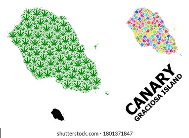 Vector hemp mosaic and solid map of Graciosa Island. Map of Graciosa Island vector mosaic for hemp legalize campaign. Map of Graciosa Island is created with green and colored hemp leaves.