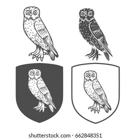 Vector heraldic shields with owl on a white background. Coat of arms, heraldry, emblem, symbol design elements.