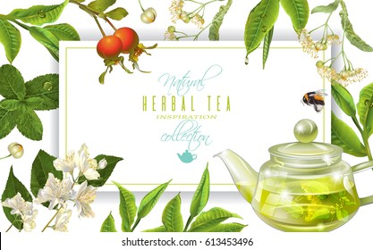 Vector herbal tea frame with tea pot ,linden, jasmine, rose hip and bee on white. Background design for packaging, tea shop, drink menu, homeopathy and health care products. With place for text.