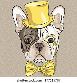 Vector hipster dog French Bulldog breed in a gold hat, glasses and bow tie