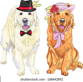 vector hipster pair of dogs: white labrador gentleman in a hat and bow tie and red labrador lady in a hat with flowers and ribbons and bow at the neck